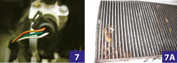 Foto 7 e 7A