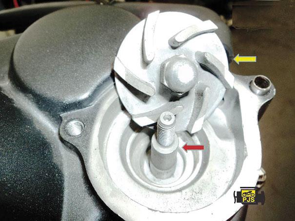 Fig.7 - Eixo e rotor da bomba d'água